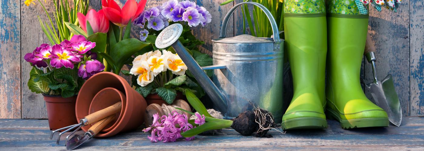 oficiavcdecora-jardinagem